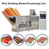 Stainless Steel Twin-Screw Extruder Eco-Friendly Factory Supply Pasta Straw Making Machine Degradable Straw Machine